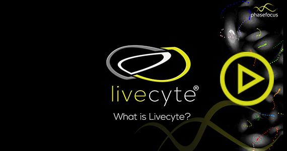 Phasefocus - What is Livecyte
